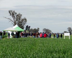 RRC Spring Field Day