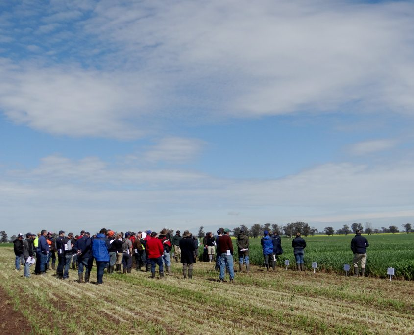 RRC Spring Field Day 2016