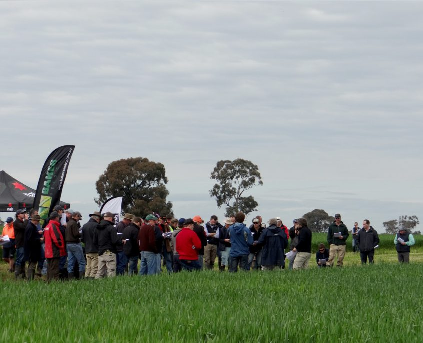 RRC Spring Field Day Growers